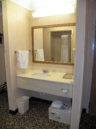 Best Western Plus Slidell Inn: sink area