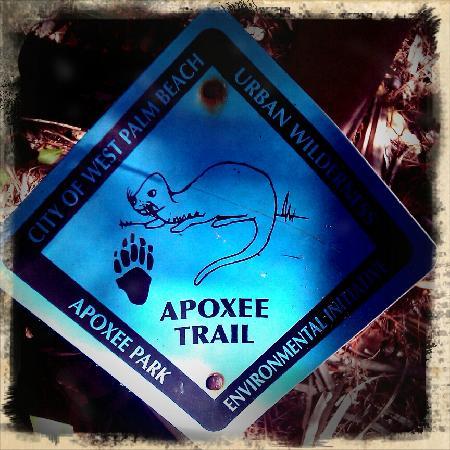 Apoxee Wilderness Trail: Trail Marker