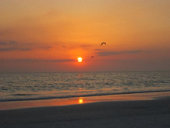 Sarasota Surf and Racquet Club: Sunset on Siesta Key beach.