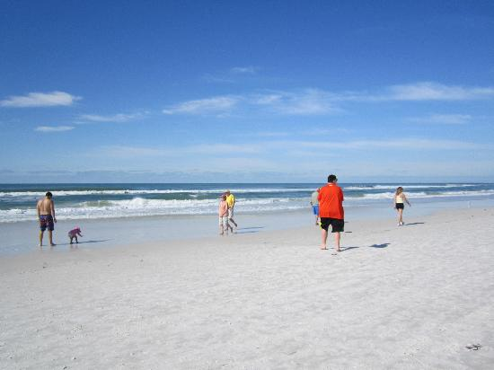 Sarasota Surf and Racquet Club: Siesta Key beach