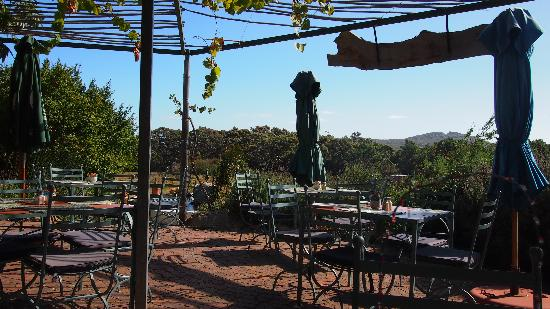 Cape Farmhouse Restaurant: Nice terrace