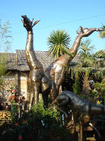 Akamba Garden Centre: Akamba