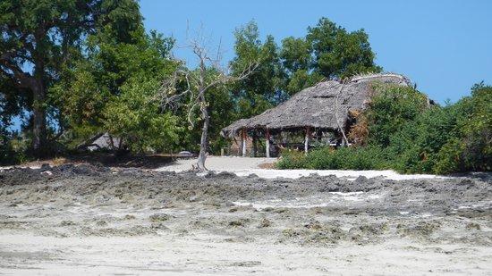 Verani Beach Hotel: les ramasseuses d'algues