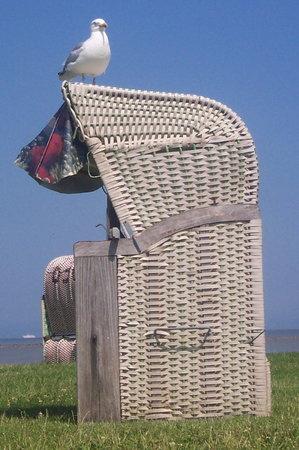 Hotel Ostfriesland garni: Ostfriesland - Erholung für Alle