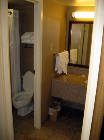 Holiday Inn - Mobile Downtown/Historic District: Tight bathroom next to sink area