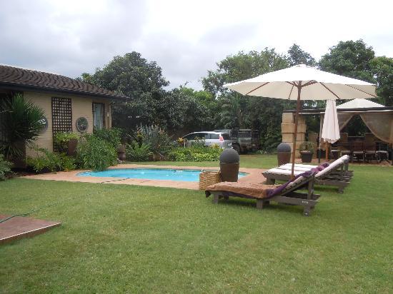 Ama Zulu Guesthouse: pool area
