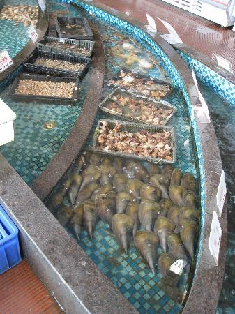 Vienna Hotel Shenzhen Minzhi: Seafood Tanks for Restaurant