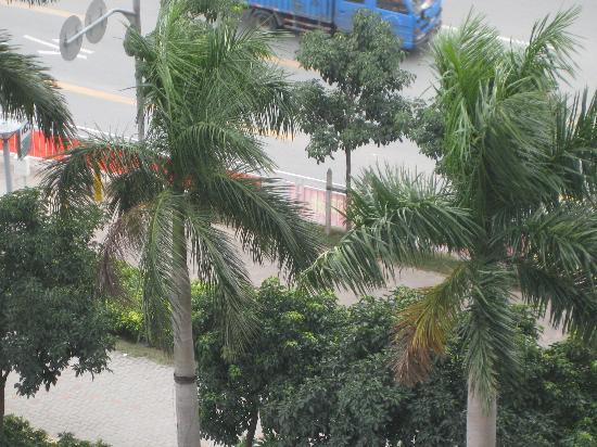 Vienna Hotel Shenzhen Minzhi: View of Front Facing Trees