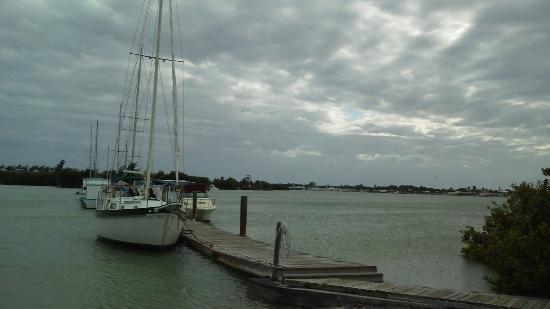 Sea Cove Motel and Marina: uitzicht op de bootjes
