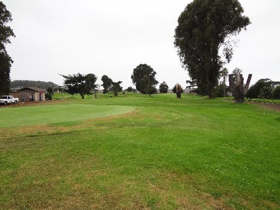 Sea Pines Golf Resort: Golf course