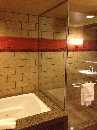 Disney's Animal Kingdom Villas - Kidani Village: Wonderful tub and shower