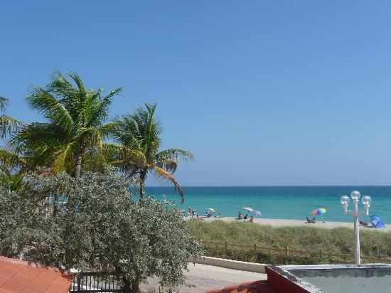 Hollywood Beach Tower : View from pool deck