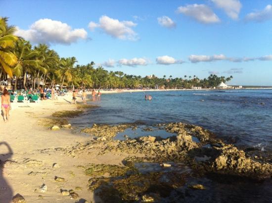 Viva Wyndham Dominicus Palace - An All-Inclusive Resort: Plage du Viva Beach