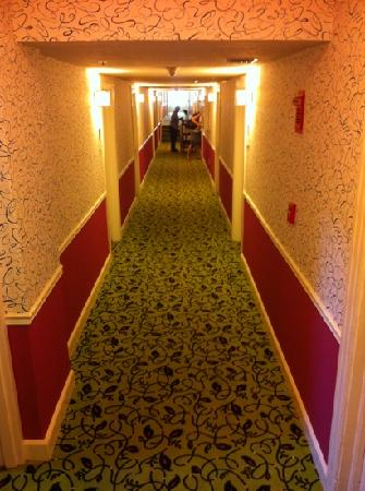 Hotel Indigo St Petersburg Downtown North: hallway everything new