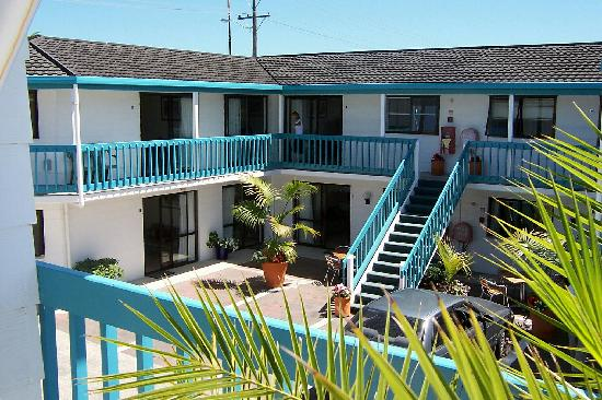 Snells Beach Motel: courtyard
