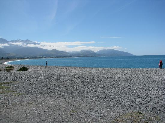 The White Morph Heritage Boutique Collection: Kaikoura bay