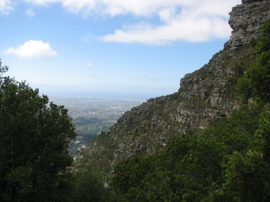 Half-Day Hiking and Trekking Tour on Table Mountain: One of the gorges on Table Mt