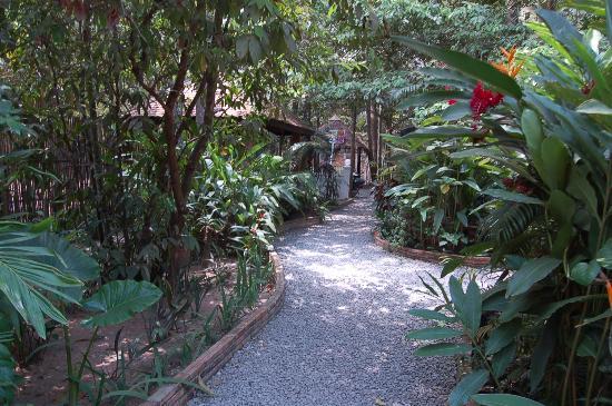 L'oasi Italiana: L'entrée