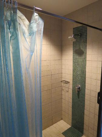 فريش إن هوتل: Nice Rainshower ... no bathtub
