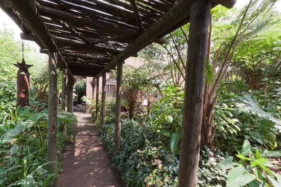 Dar Amane Guest Lodge: private garden