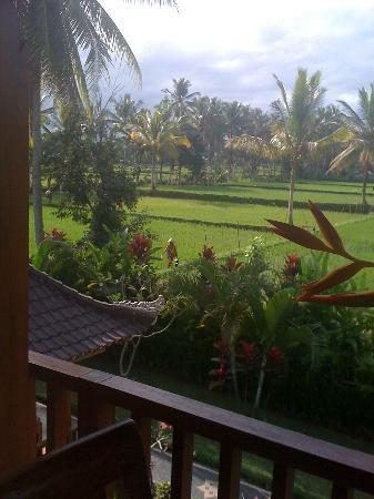Villa Agung Khalia: A different view from Honeymoon Suite