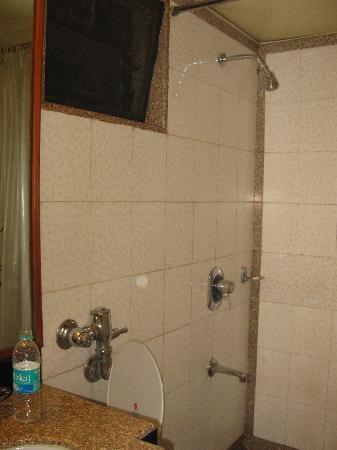 Hotel Executive Enclave : bathroom