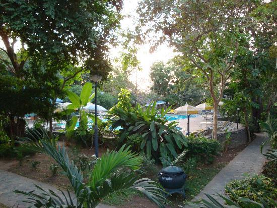 Pattaya Garden Hotel: Gartenanlage