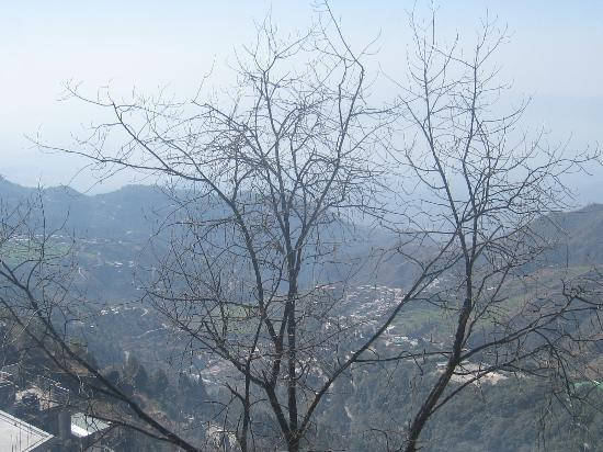 Honeymoon Inn Mussoorie: View through our room