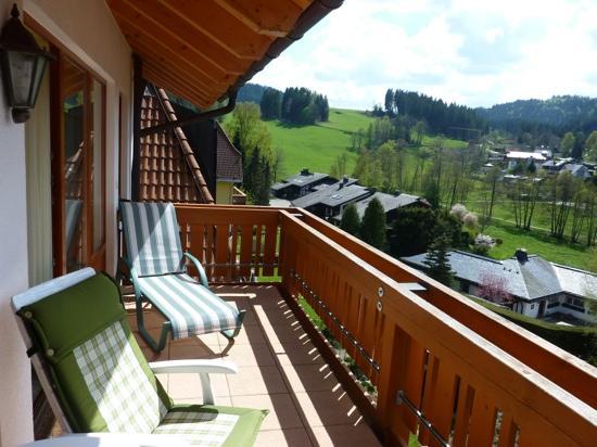 Erfurths Bergfried Ferien & Wellnesshotel : Blick vom Balkon