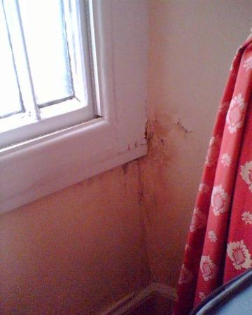Oakbank House: Mould under window
