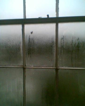 Oakbank House: Condensation