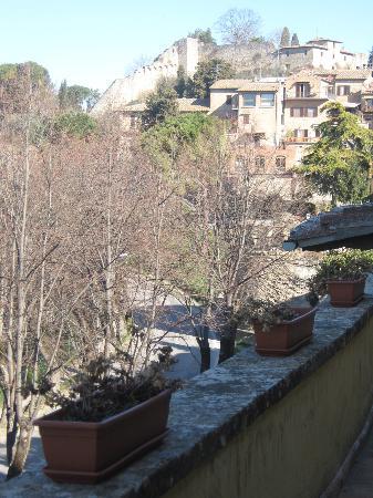 Palazzo al Torrione 2: La vista dal terrazzino della camera