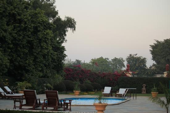 Taj SMS Hotel: Pool and lawns