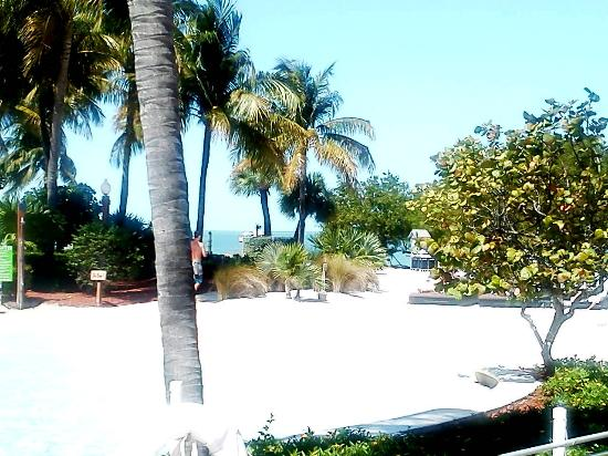 Hyatt Beach House Resort: Beach Area