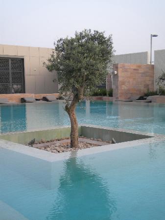 Aloft Abu Dhabi: Swimming pool