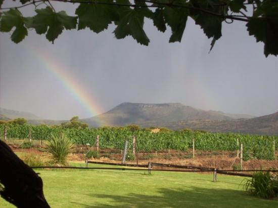 Harrison Hope Wine Estate: view from my room