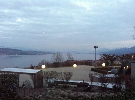 vista dalla terrazza lago di Zurigo - Bild von Restaurant Schonegg ...