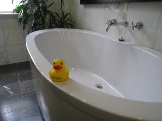 TARA Guest House : bath