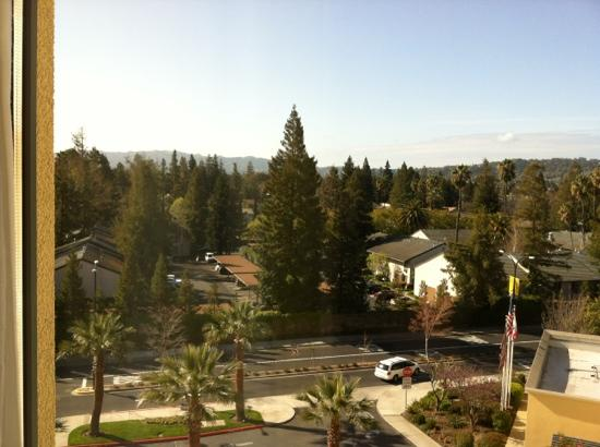 Renaissance ClubSport Walnut Creek Hotel: A pleasant view from my room.