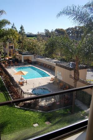 Courtyard San Diego Carlsbad/McClellan-Palomar Airport: Pool area
