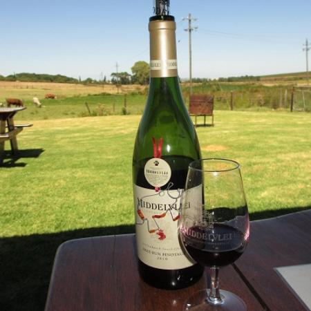 Middelvlei: Delicious wine.