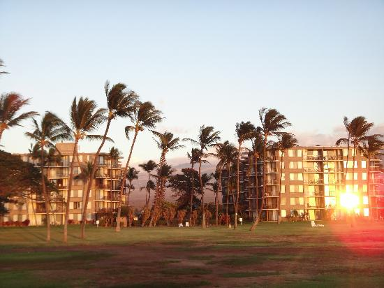 Kauhale Makai, Village by the Sea: From the beach looking back at the KM