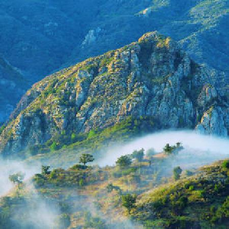 Hidden Malibu Wine Country Tours: santa monica mountains
