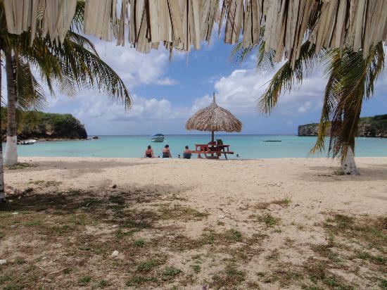 Marazul Dive Resort: Santa Cruz Beach