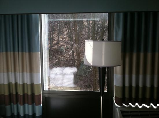 Hampton Inn White Plains / Tarrytown: view ( room facing woods )