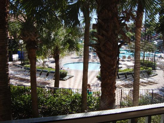 Sheraton Vistana Resort Villas- Lake Buena Vista : View of pool from screen balcony