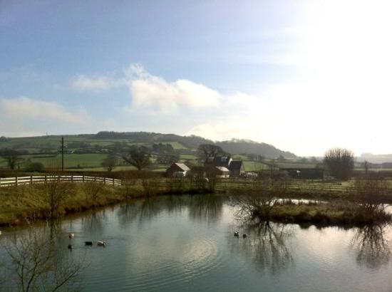 Spillers Farm: The Lake