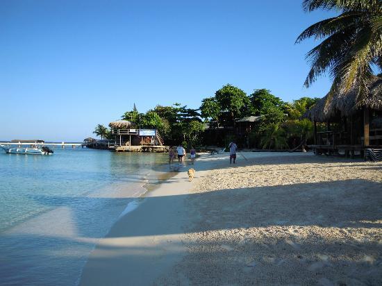 Las Sirenas Hotel & Condos: la spiaggia ed il mare