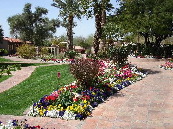 Hermosa Inn: One of a dozen flower beds on the property