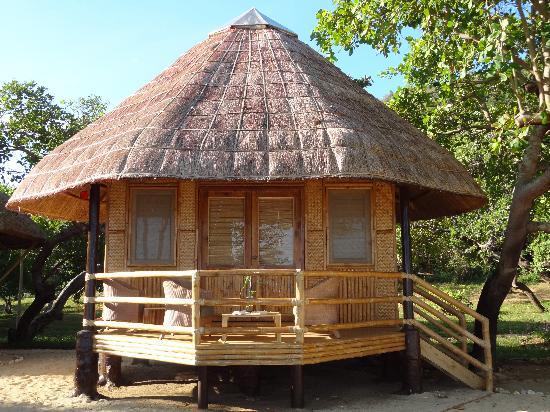 Cashew Grove Beach Resort Hotel - room photo 11013674